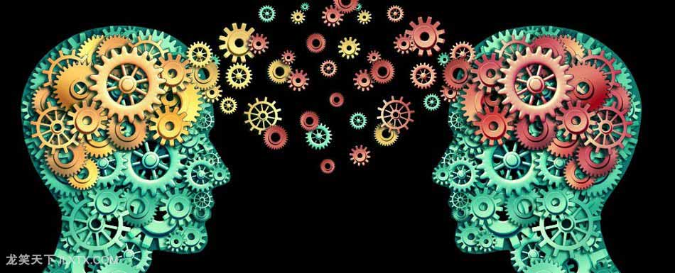 大脑究竟如何迅速处理海量信息? 科普交流