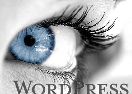 如何方便的在更新主题时保留 functions.php 里的自定义功能函数 wordpress