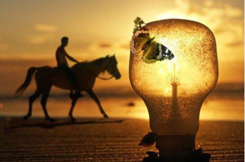 装下时光的灯泡
